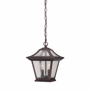 Vanleer 2-Light Outdoor Hanging Lantern