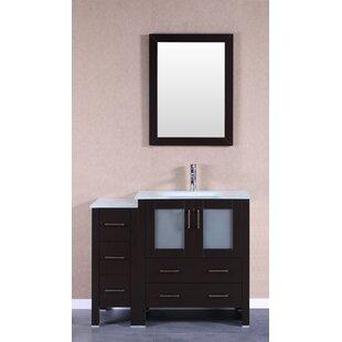 Online Reviews Lucey 42 Single Bathroom Vanity Set with Mirror ByBreakwater Bay