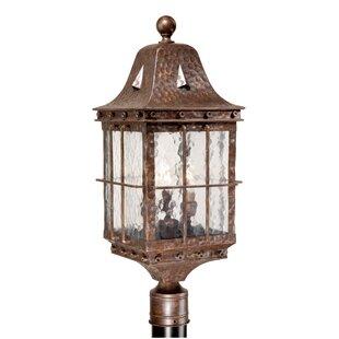 Brough Outdoor 3-Light Lantern Head by Fleur De Lis Living
