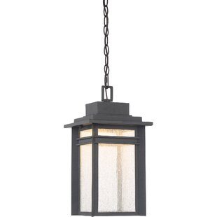 Olveston 1-Light Outdoor Hanging Lantern