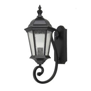 Canora Grey Dunand 1-Light Outdoor Wall Lantern
