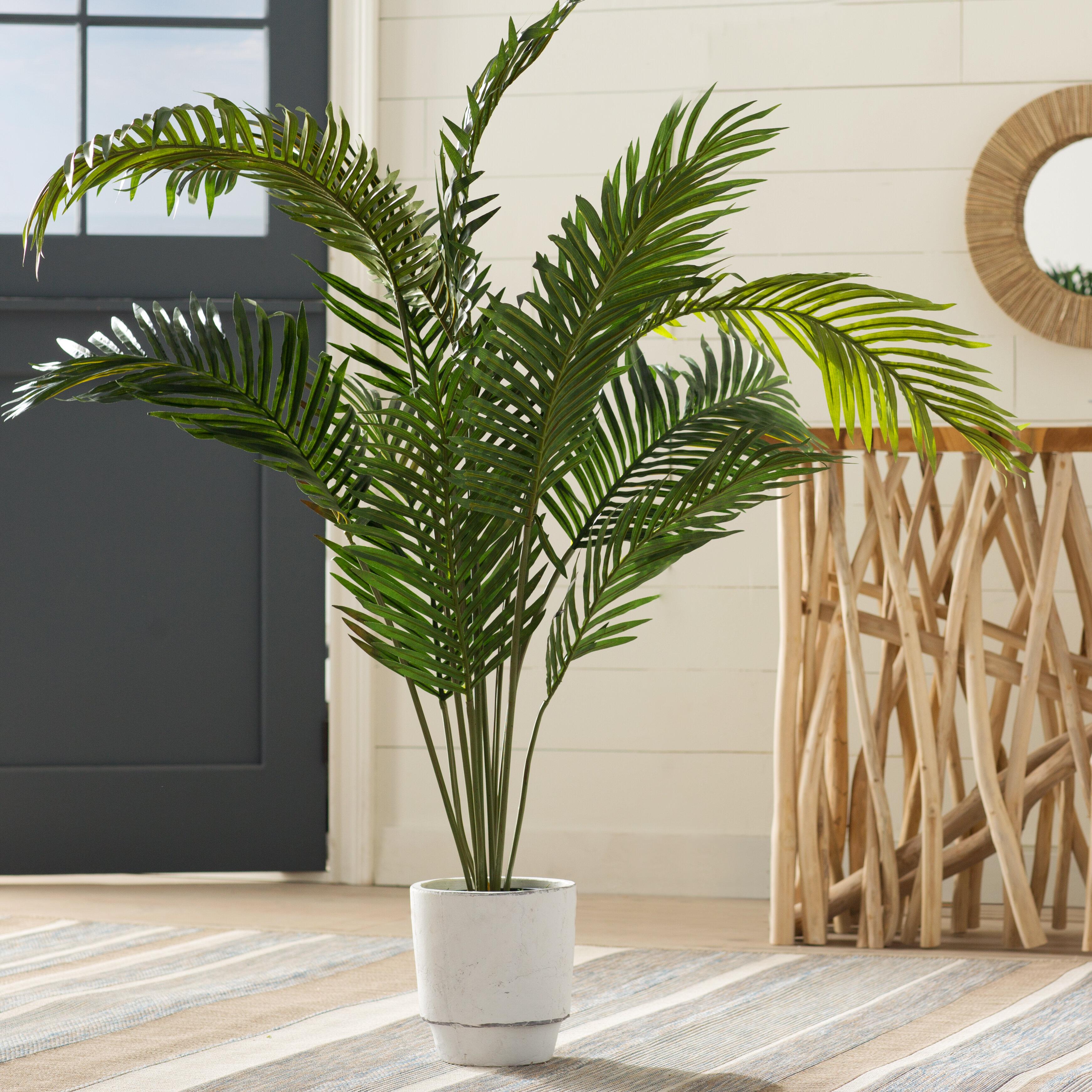 Beachcrest Home Esters 60 Artificial Palm Plant Reviews Wayfair