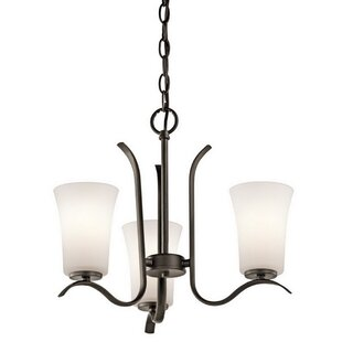 Canyon 3-Light Shaded Chandelier by Alcott Hill