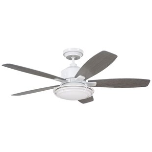 54 Jeanine 5 Blade Outdoor Ceiling Fan