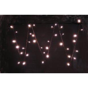 White String Lights Image