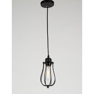 Abeer 1-Light Novelty Pendant by Williston Forge