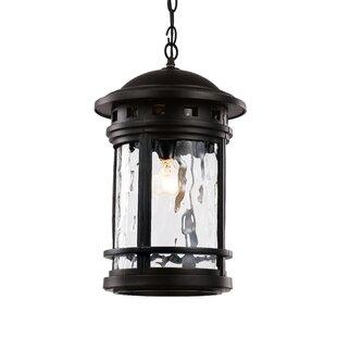 Loon Peak Ashberry 1-Light Outdoor Hanging Lantern