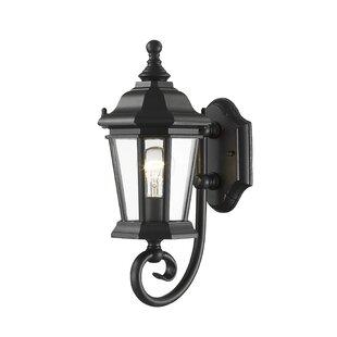 Bibb 1-Light Outdoor Wall Lantern
