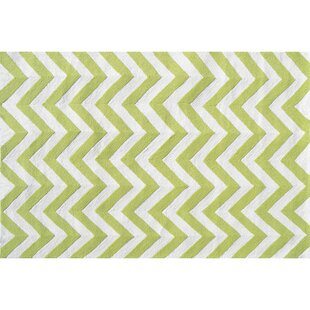 Hand-Hooked Green Indoor/Outdoor Area Rug