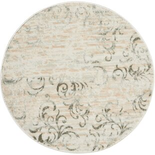 Drain Area Rug by Charlton Home