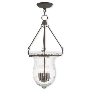 Darby Home Co Bachmann 4-Light Urn Pendant
