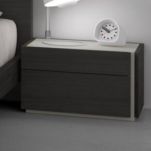 Read Reviews Comet 2 Drawer Nightstand by Brayden Studio