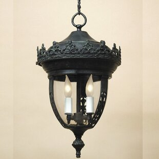 Speaks Medium 3-Light Outdoor Hanging Lantern By Astoria Grand