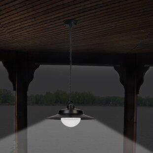 Sunforce 1-Light LED Outdoor Pendant