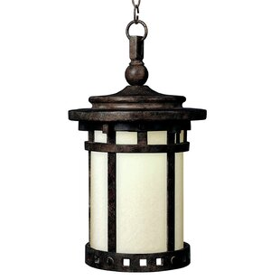 Esplanade 1-Light Outdoor Hanging Lantern by Millwood Pines