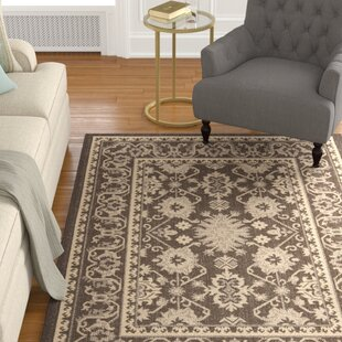 Bexton Chocolate/Cream Indoor/Outdoor Area Rug