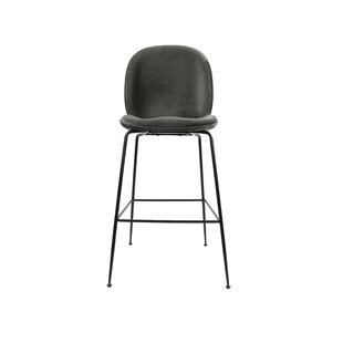 Aucuba 30 Bar Stool by Brayden Studio