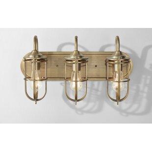Williston Forge Abordale 3-Light Vanity Light
