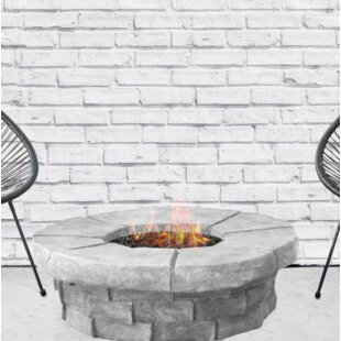 Bungalow Rose Bronwyn Steel Fire Pit Table