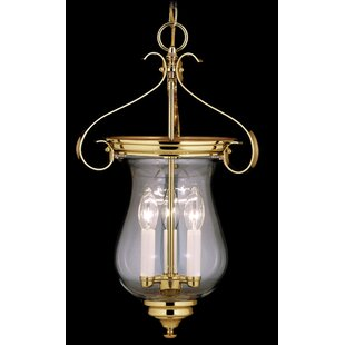 Darby Home Co Redcar 3-Light Urn Pendant