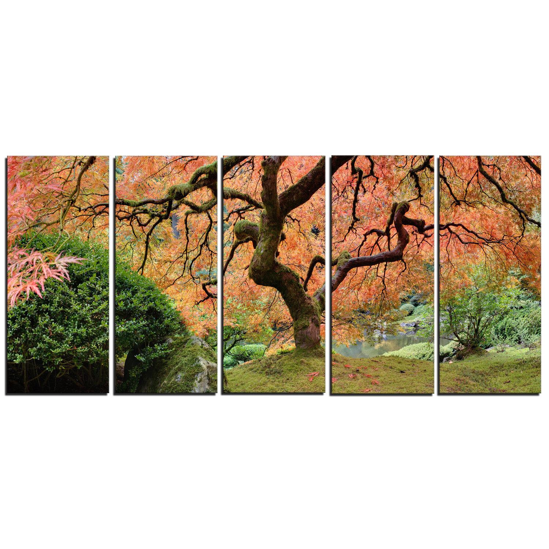 Designart Old Japanese Maple Tree Landscape 5 Piece Photographic Print On Wrapped Canvas Set Wayfair