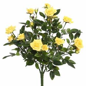 Mini Diamond Roses Bush Stem