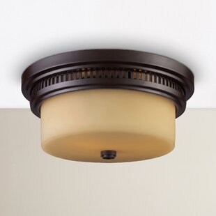 Roa 2-Light Flush Mount by Breakwater Bay