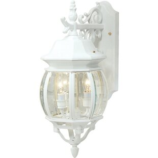 Glyndon 3-Light Outdoor Wall Lantern by Astoria Grand