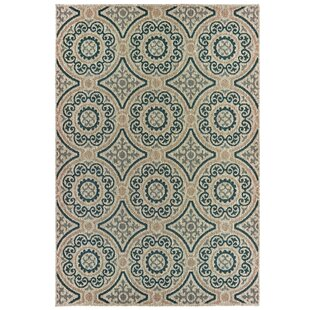 Berryville Panel Medallion Gray/Blue Indoor/Outdoor Area Rug