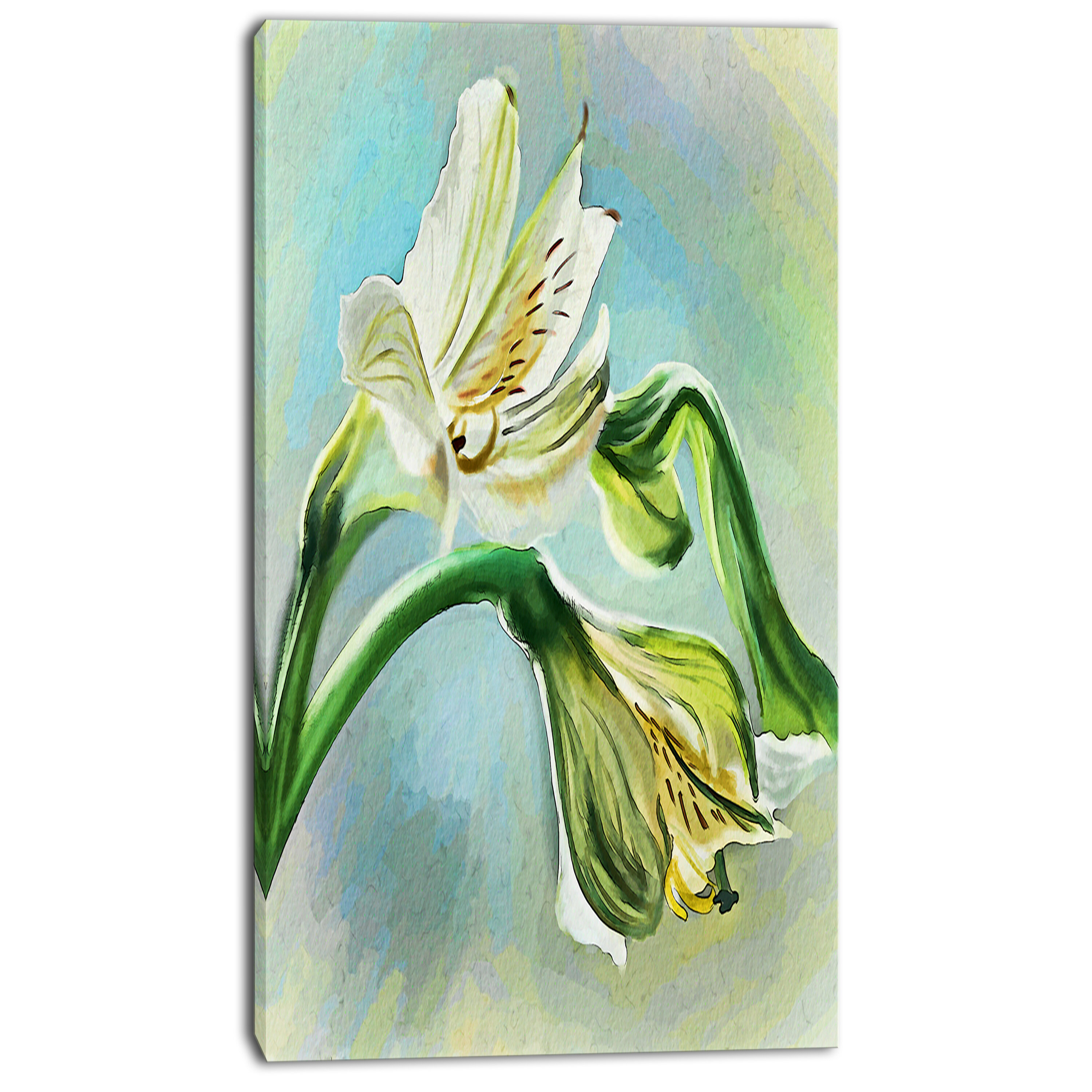 Designart White Lily Flower Sketch Watercolor Painting Print On Wrapped Canvas Wayfair