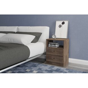 Norloti 2 Drawer Nightstand by Langley Street