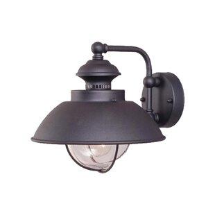 Beachcrest Home Nishi 1-Light Outdoor Barn Light