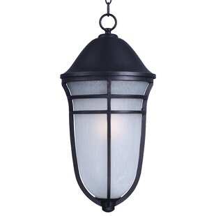 Affordable Price Caleb 1-Light Outdoor Hanging Lantern By Darby Home Co