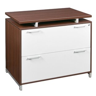 Brayden Studio Maverick 2-Drawer Lateral File