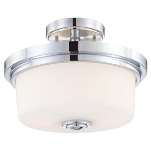 Birch Lane™ 2-Light Semi..