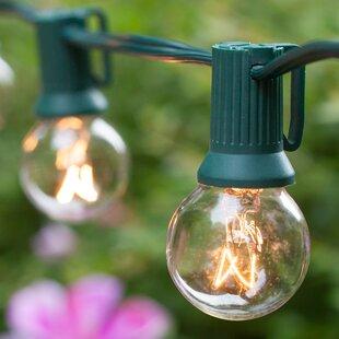Wintergreen Lighting 20-Light Globe String Lights