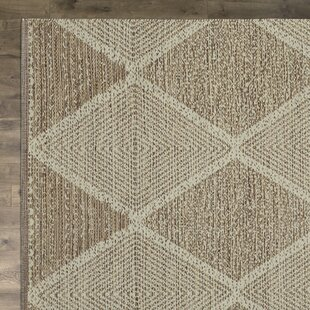 Jessup Hand-Woven Cotton Beige Area Rug by Birch Lane?