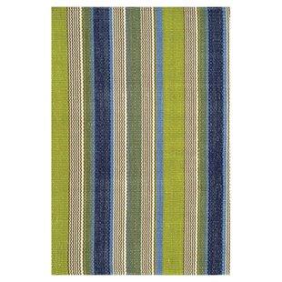 Woven Cotton Green Indoor/Outdoor Area Rug