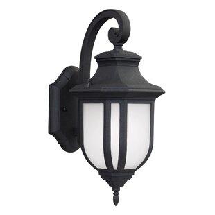 Low priced Teri 1-Light Outdoor Wall Lantern By Fleur De Lis Living