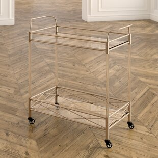 Anesicia 2-Tiered Storage Bar Cart by Everly Quinn