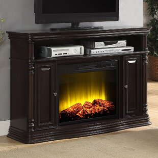Nataly TV Stand for TVs up to 48 with Fireplace by Charlton Home