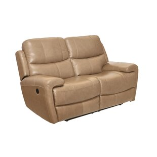 Defazio Leather Power Reclining Loveseat by Red Barrel Studio