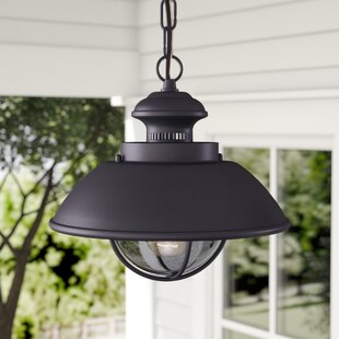Archibald 1-Light Outdoor Hanging Lantern