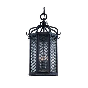 Hinckley 2-Light Outdoor Hanging Lantern