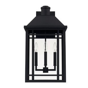 Chad 3-Light Outdoor Wall Lantern by Alco..