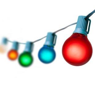 Wintergreen Lighting 50-Light Globe String Lights