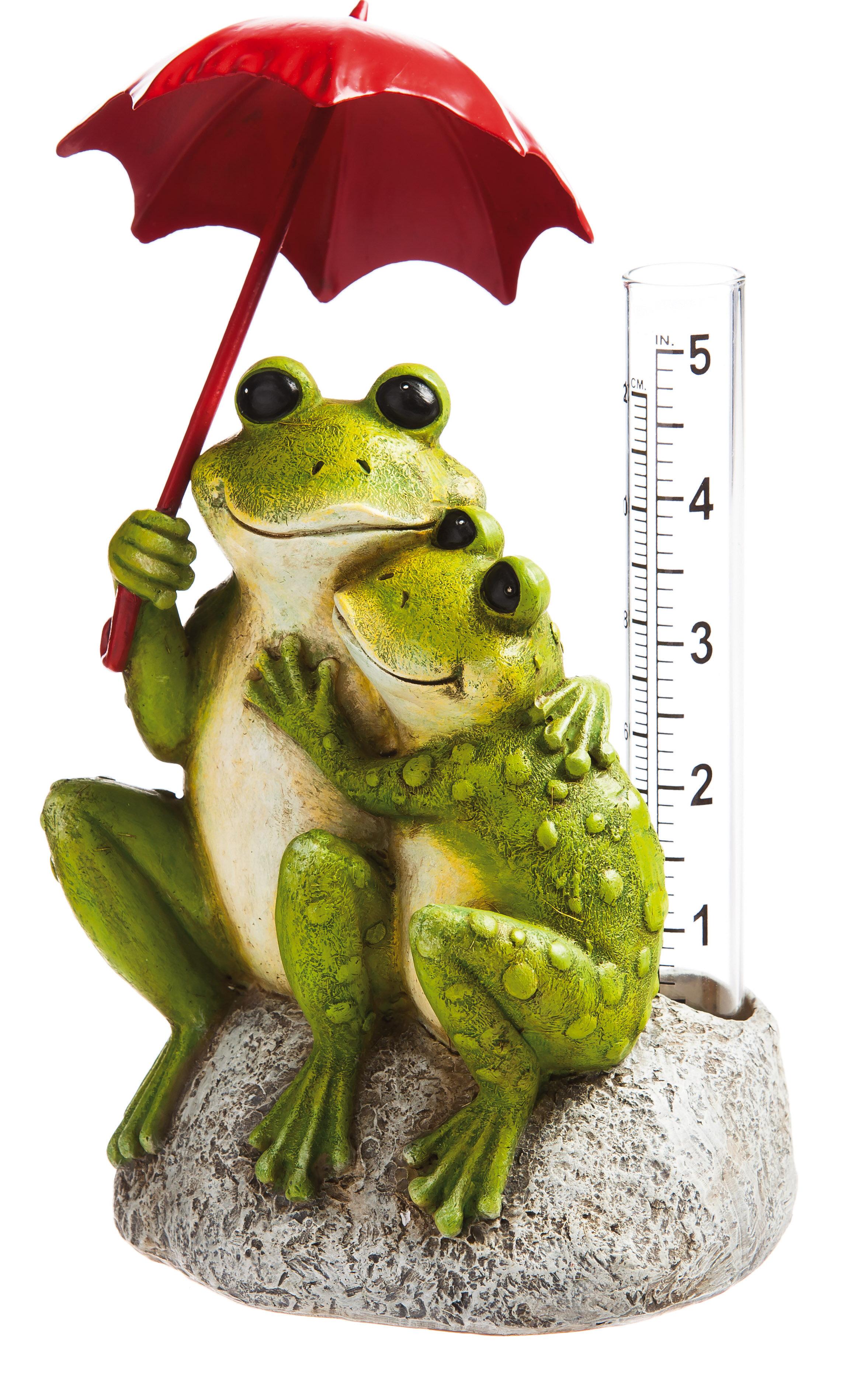 Evergreen Enterprises, Inc Dee Frog Rain Gauge   Wayfair