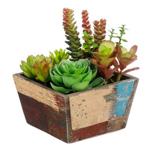 Artificial Plant In Basket Image