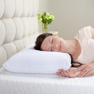 Shopping Memory Foam Pillow By Alwyn Home