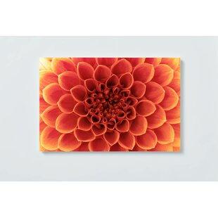 Flower Motif Magnetic Wall Mounted Cork Board By Ebern Designs